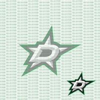 Fanatic: Dallas Stars 12 x 12 Paper