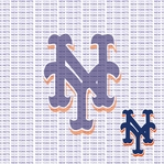 Fanatic: New York Mets 12 x 12 Paper