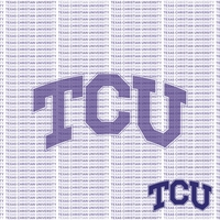 Fanatic: Texas Christian University 12 x 12 Paper