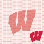Fanatic: University of Wisconsin 12 x 12 Paper