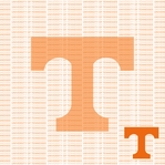 Fanatic: University Tennessee 12 x 12 Paper