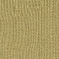 Fawn Canvas 12 X 12 Bazzill Cardstock (Brown)