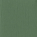 Fern Canvas 12 X 12 Bazzill Cardstock (Green)