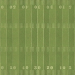 Fifty Yard Line 12 x 12 Paper