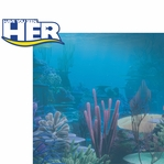 Finding Dory: Have You Seen Her 2 Piece Laser Die Cut Kit