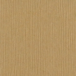 Iced Cocoa Grasscloth 12 X 12 Bazzill Cardstock (Brown)