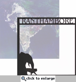 India: Ranthambore 12 x 12 Overlay Quick Page Laser Die Cut-<font color=red><b>We LOVE!</b></font>