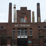 Ireland: Guiness Storehouse 12 x 12 Paper