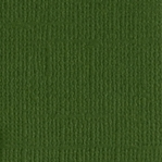 Ivy Canvas 12 X 12 Bazzill Cardstock (Green)