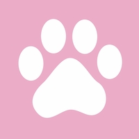 Kitty Cat: Paw Print 12 x 12 Overlay Laser Die Cut