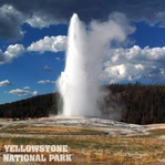 National Park: Yellowstone 12 x 12 Paper