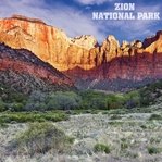 National Park: Zion 12 x 12 Paper