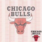 NBA Fanatic: Chicago Bulls 12 x 12 Paper