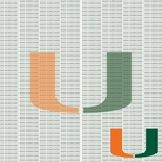 NCAA Fanatic: University of Miami 12 x 12 Paper