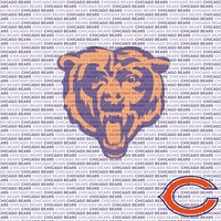 NFL Fanatic: Chicago Bears 12 x 12 Paper