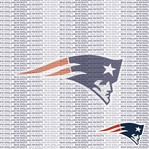 NFL Fanatic: New England Patriots 12 x 12 Paper