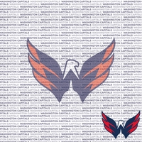 NHL Fanatic: Washington Capitals 12 x 12 Paper