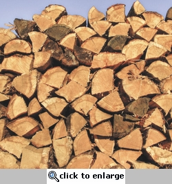 Pile of Firewood 12 x 12 Paper