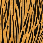 Safari: Tiger Print 12 x 12 Double-Sided Paper