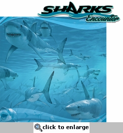 Sea The World: Shark Encounter 2 Piece Laser Die Cut Kit