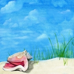 Seashell treasure 12 x 12 Paper