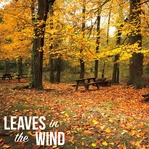 Seasonal Sayings: Leaves 12 x 12 Paper