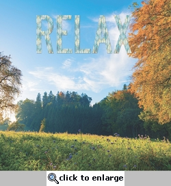 Simple Sayings: Relax 12 x 12 Paper