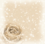 Sparkling Cream Rose 12 x 12 Paper
