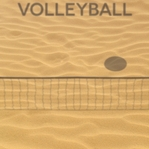 Sports Galore: Volleyball 12 x 12 Paper