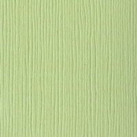 Spring Breeze Grasscloth 12 X 12 Bazzill Cardstock (Green)