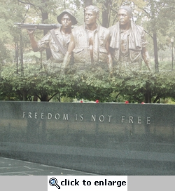 The Capitol: Vietnam Memorial 12 x 12 Paper