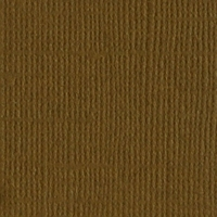 Walnut Canvas 12 X 12 Bazzill Cardstock (Brown)