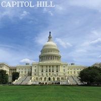 Washington D.C: Capitol Hill 12 x 12 Paper