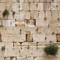 Western Wall 12 x 12 Paper
