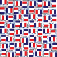 World Flags: France 12 x 12 Paper