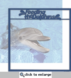 World Of The Sea: Feeding The Dolphins 12 x 12 Overlay Quick Page Laser Die Cut