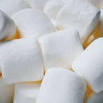 Yummy in my Tummy: Marshmallows 12 x 12 Paper