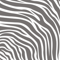 Zoo Days: Zebra Pattern 12 x 12 Paper