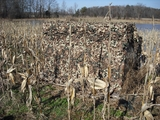 Camo Systems Broad Leaf Camouflage Netting