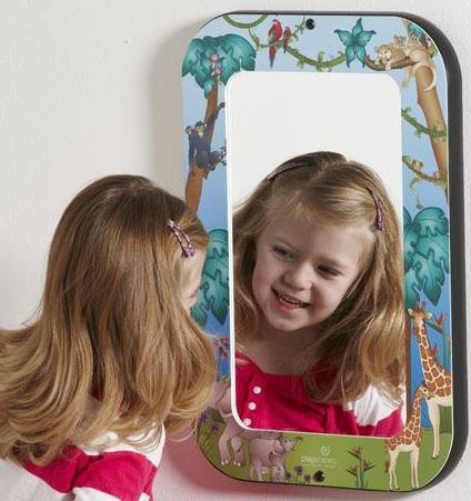 Animal Families Acrylic Wall Mirror