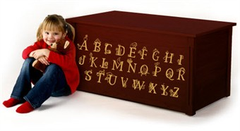Dark Cherry Wooden Toy Box