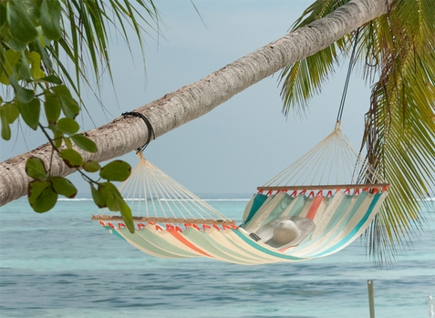 La Siesta Double Hammock Bars Colada Cura�ao with Spreader - Out of Stock