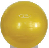 FitBALL 75cm Exercise Ball - Free Shipping