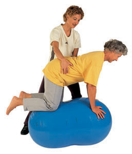 "Gymnic 28"" x 46"" Physio Roll"