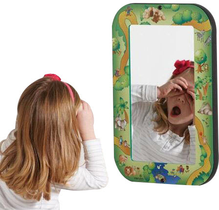 Safari Acrylic Wall Mirror