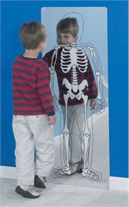See Thru Me Skeleton Mirror