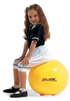 "Sit n Gym 18"" Ball Chair - Free Shipping"