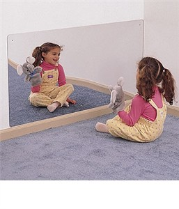 Whitney Brothers 4' x 2' Acrylic Mirror