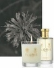 Floris at Home - 25% Off Try Me Event