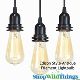 "Antique ""Edison Style"" Lightbulb - Squirrel Cage Filament"